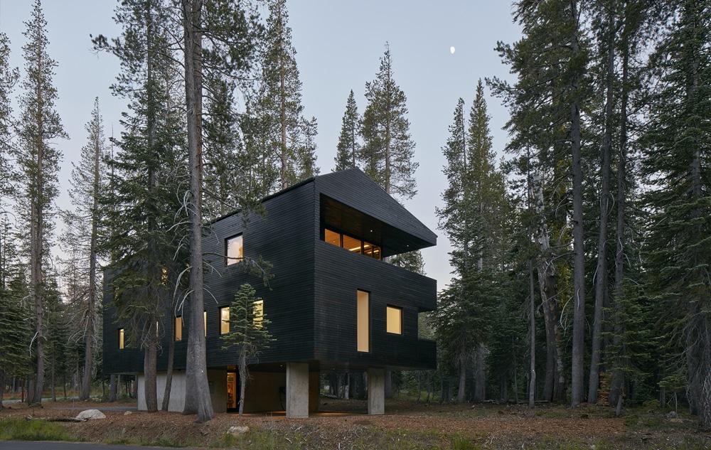 Das kalifornische Baumhaus