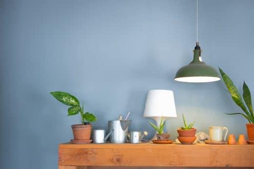 shutterstock_301399562, Zimmerpflanzen, Leuchten, Lampe
