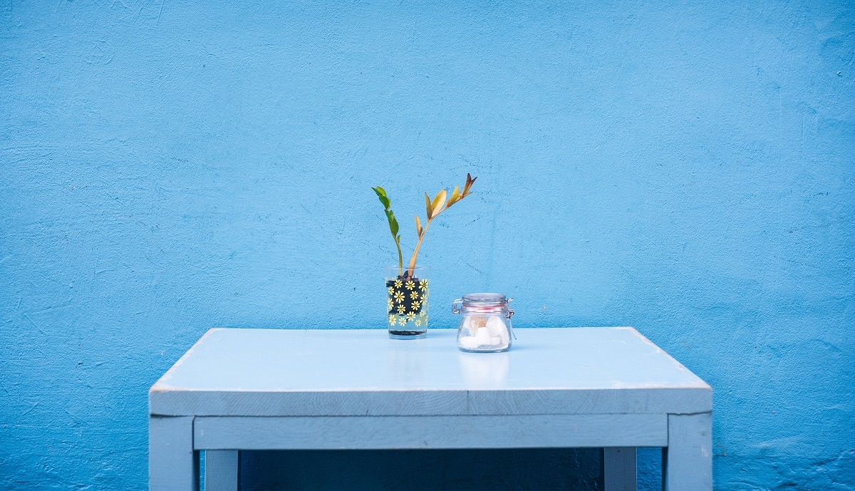 A photo by Padurariu Alexandru, blue table, blue wall
