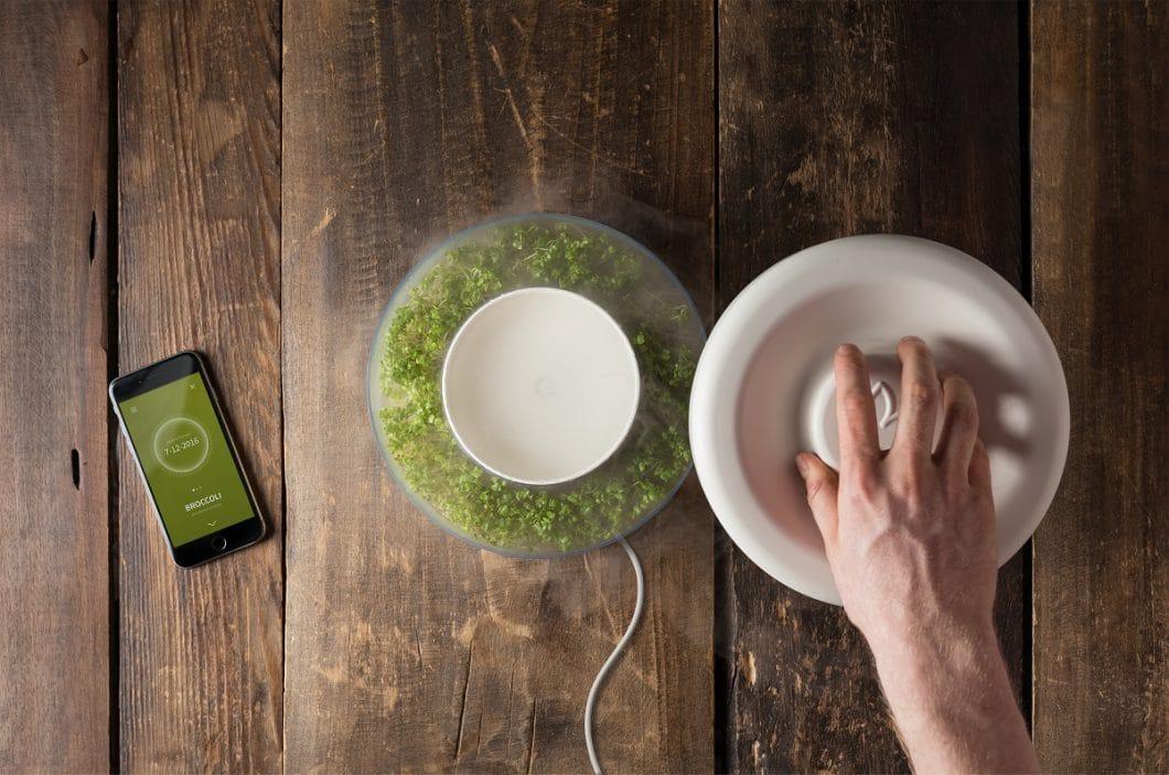 Der donut-förmige Sproutr mit einem Deckel aus Steingut und der dazugehörigen App: Sprossen züchten in wenigen Tagen. (Foto: Sproutr/ Vooking)