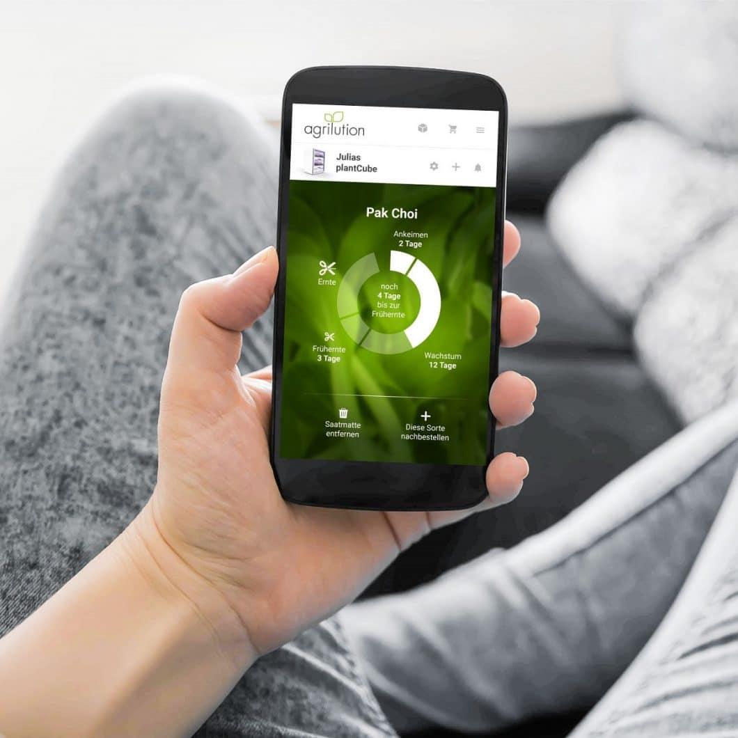 Eine App, die mit dem Plantcube gekoppelt ist, überwacht alle wichtigen biochemischen Prozesse, darunter die optimale Temperatur und Bewässerung. Der Nutzer kann hier einsehen, wie es um seine Pflanzen steht und wie lange es bis zur Ernte dauert. (Foto: agrilution)