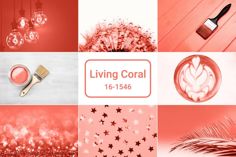 Die Pantone Farbe des Jahres 2019 lautet Living Coral (Quelle: Efetova Anna/Shutterstock)