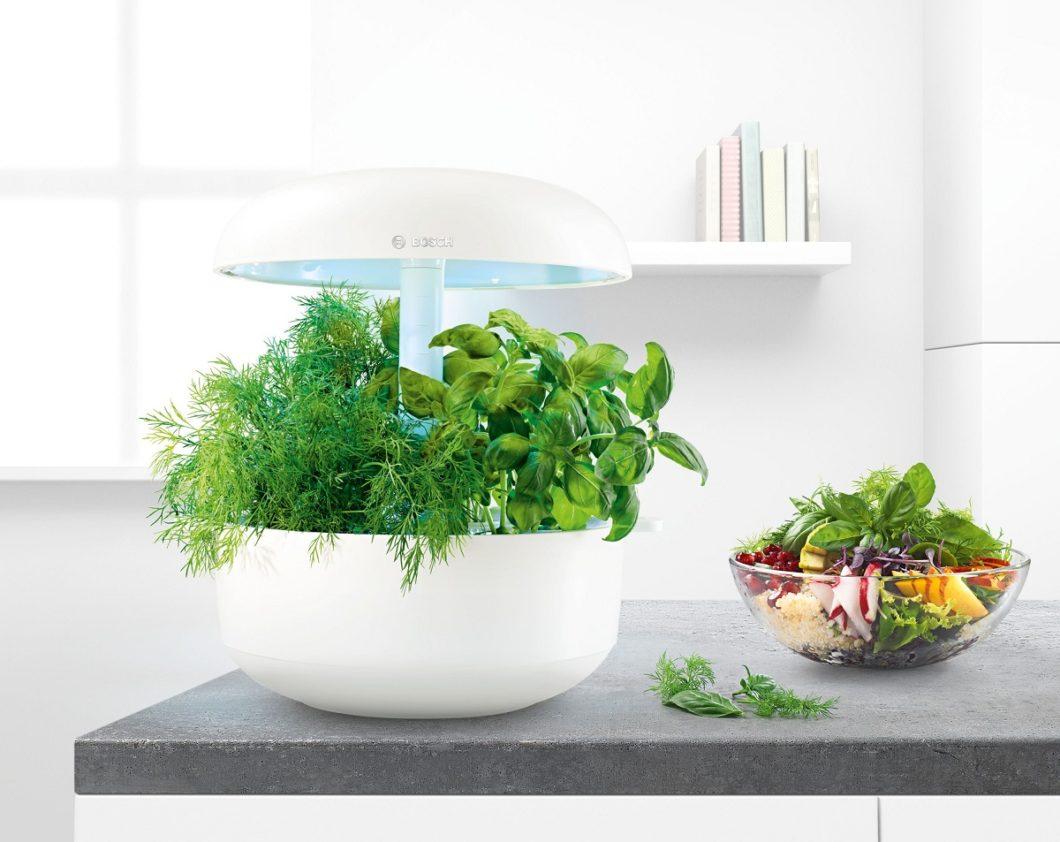 Mit dem Bosch SmartGrow soll das Züchten und Ernten frischer Küchenkräuter künftig spielerisch leicht sein. (Foto: Bosch Hausgeräte)
