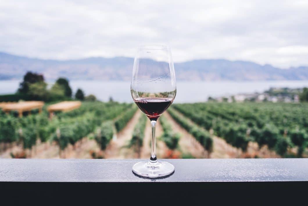 Herkömmliche Weingläser sind in der Regel dickwandiger und nicht aus einem Stück Glas gefertigt. Überdies wird hierzu in der Regel nur das günstige Weißglas verwendet. Dieses Glas im Bild soll beispielsweise auch lediglich für eine Weinsorte verwendet werden. Wieviel praktischer wäre da ein Universalglas? (Foto: pexels.com)