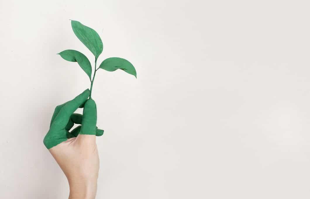 Nachhaltigkeit in der Küche: ein Thema, das uns alle immer stärker etwas angeht - und das wir in 3 Etappen auch bewerkstelligen können. (Foto: Alena Koval)