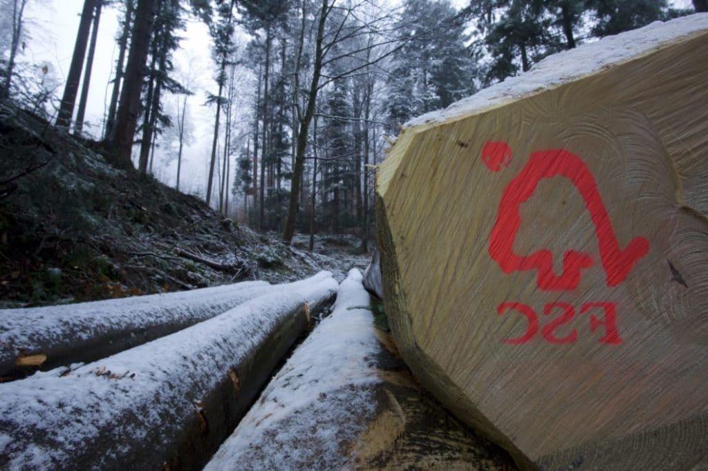 Das FSC-Siegel ist ein sehr wichtiger und grundlegender erster Schritt für mehr Nachhaltigkeit im Möbelsegment. (Foto: FSC Deutschland)